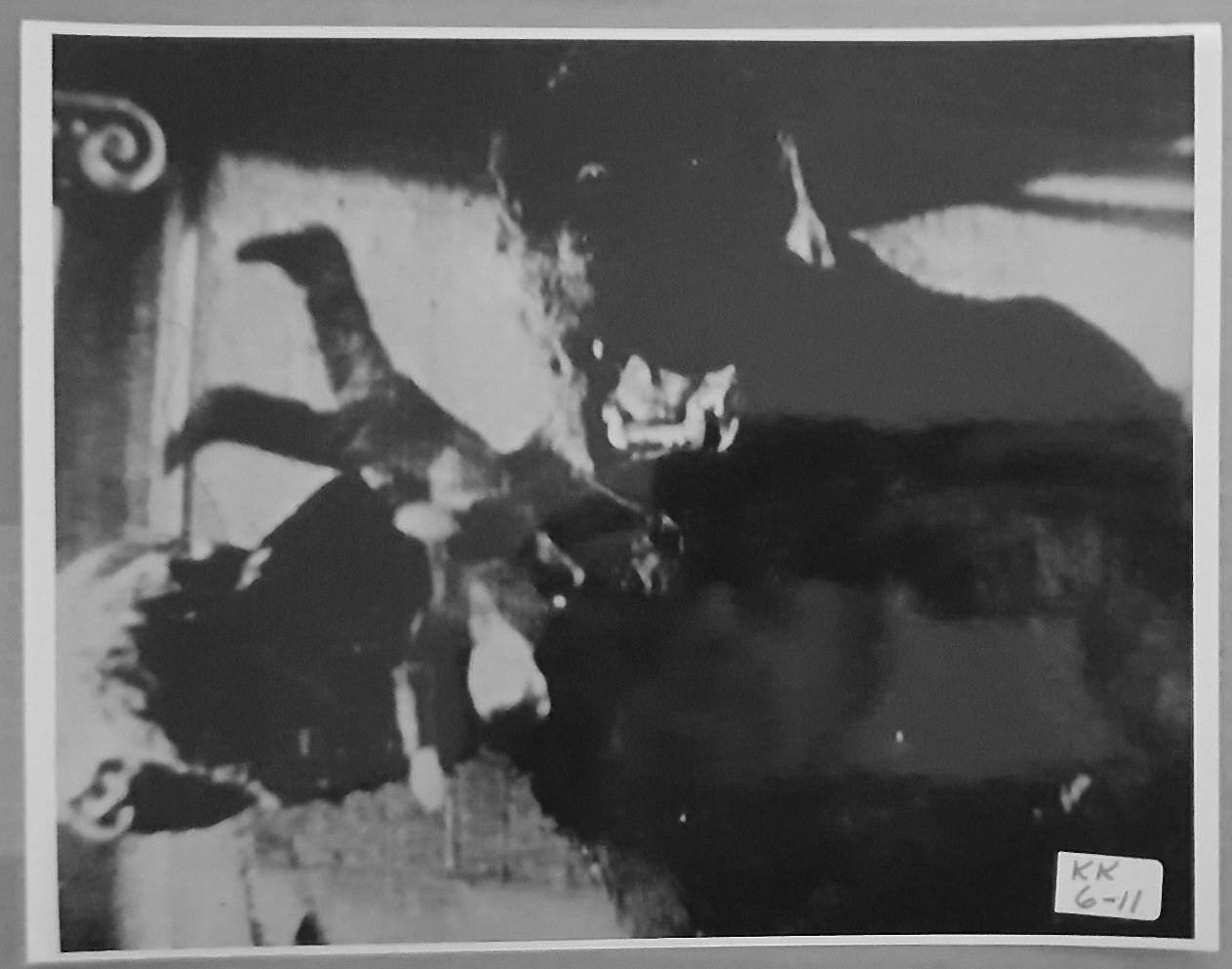 KING KONG (1933) 8x10 Original File Photo 20