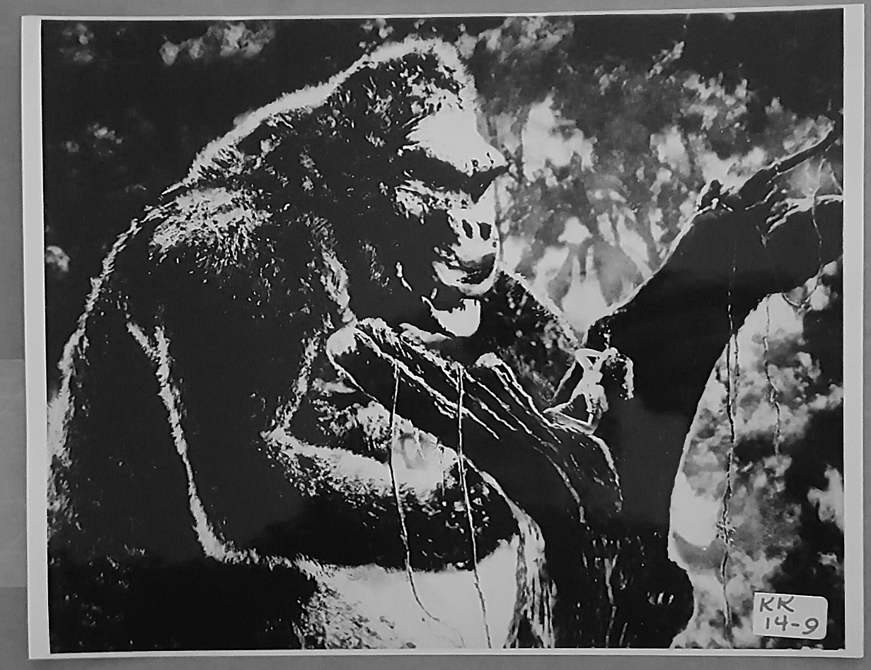 KING KONG (1933) 8x10 Original File Photo 28
